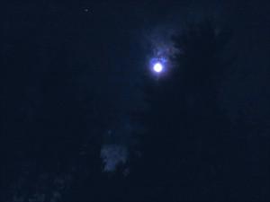 MoonPhil